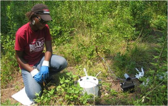A student conducts field research for the CFEA