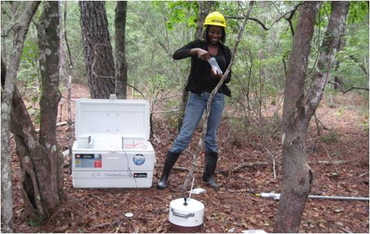 A student conducts research in a forest for the CFEA